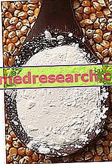 Maizena o almidon de maiz