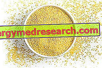 Kuskus: Nutriční vlastnosti, role ve stravě a použití v kuchyni R.Borgacci