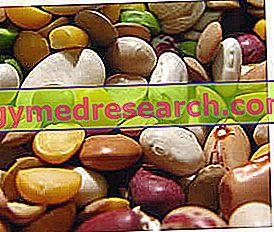 Житарице, махунарке и кондименти - Дијетална потрошња Мало