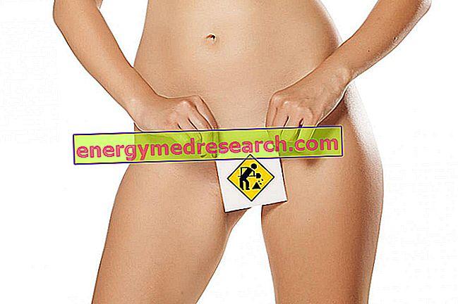 Вълварна и вагинална естетична хирургия