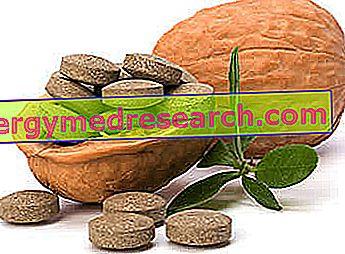 Fitosteroli - Ali delujejo?