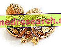 फाइटोस्टेरोल्स: साइड इफेक्ट्स और स्वास्थ्य जोखिम