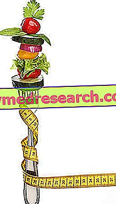 Contoh Diet untuk Kolesterol Tinggi (Wanita)