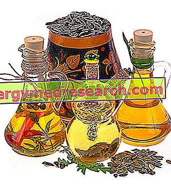 Remedios para el colesterol alto