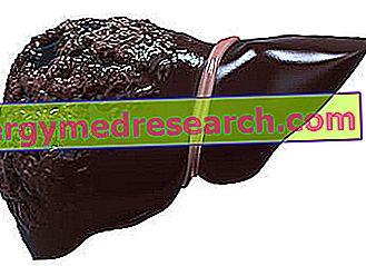Hepatitt B: Diagnose og behandling