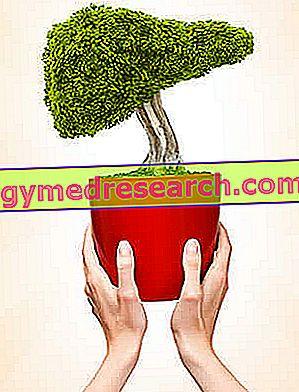 Dieta i wirusowe zapalenie wątroby typu B