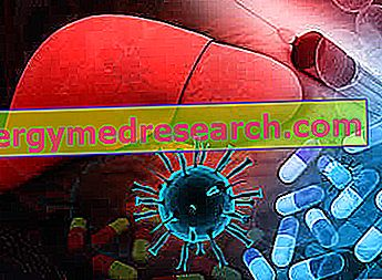 単核球症のための食事療法