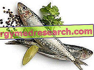 Παράδειγμα δίαιτας για υψηλά τριγλυκερίδια