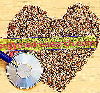 Régime alimentaire pour triglycérides élevés