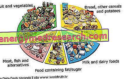 Exempel Diet Dash (Diet mot hypertoni)