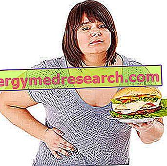 Ví dụ Ăn kiêng chống gan nhiễm mỡ