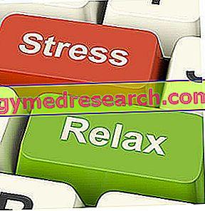 Tegen stress - Welk dieet?