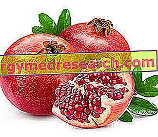 Dieta y Diverticoli - ¿Qué alimentos elegir?