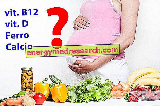 Dieta vegana y embarazo