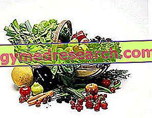 Diet dan Perhitungan Gallbladder
