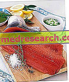 Dieta y salmón