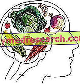 Przykład diety wegetariańskiej