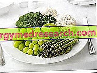 Contoh Diet Vegan