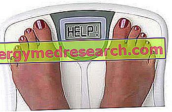 Pavyzdinių taškų dieta