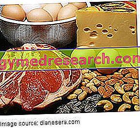 Παράδειγμα διατροφής με υψηλή περιεκτικότητα σε πρωτεΐνες