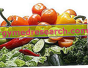 Dieta de alimentos crus