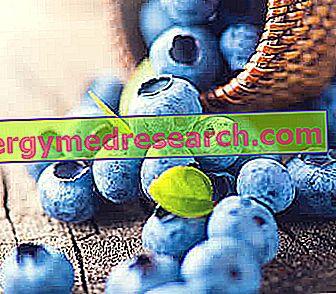 Den lilla-blå diæt
