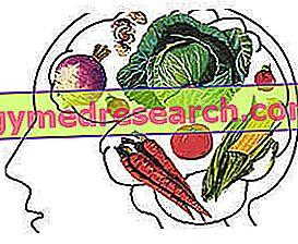 Sport en vegetarisch dieet