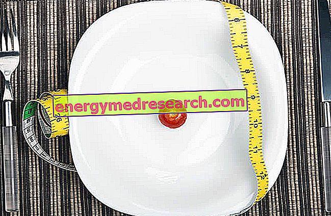 Dietas a muy bajas calorías - Dieta muy baja en calorías