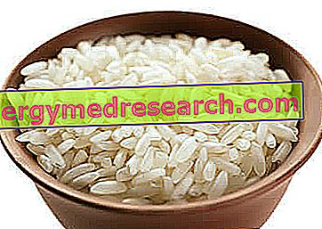 Dieta de arroz
