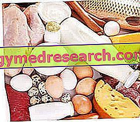 Oligoproteinų dieta
