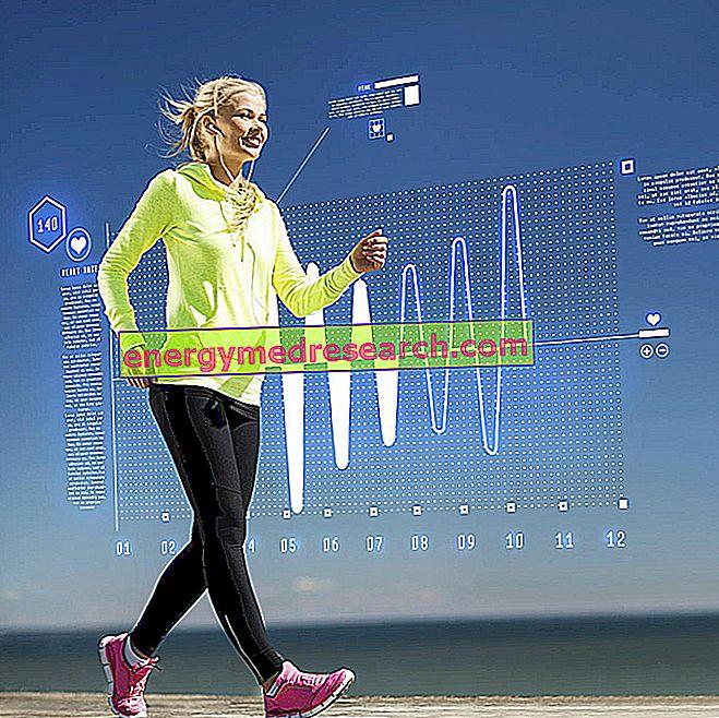 Prarasti svorį: internetinės programos