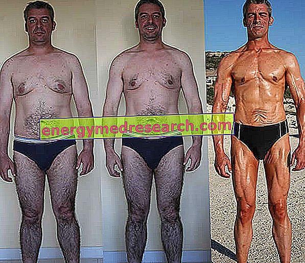Fotók előtt és után - Képzés, táplálkozás és személyi edző