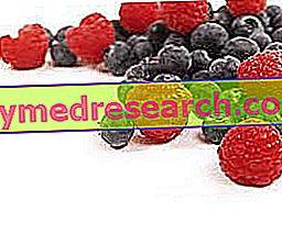 Metabolisma loma liekā svara un aptaukošanās ģenēze: cēloņi, diagnostika un iespējamās terapijas