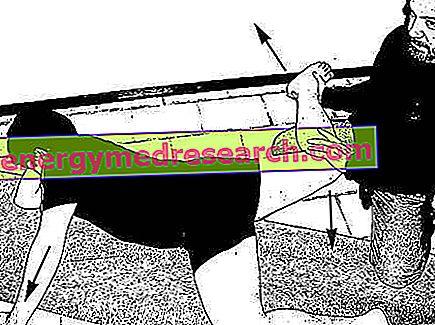 Une méthode alternative pour réduire l'accumulation de graisse sur les cuisses et les hanches (culotte de cheval)