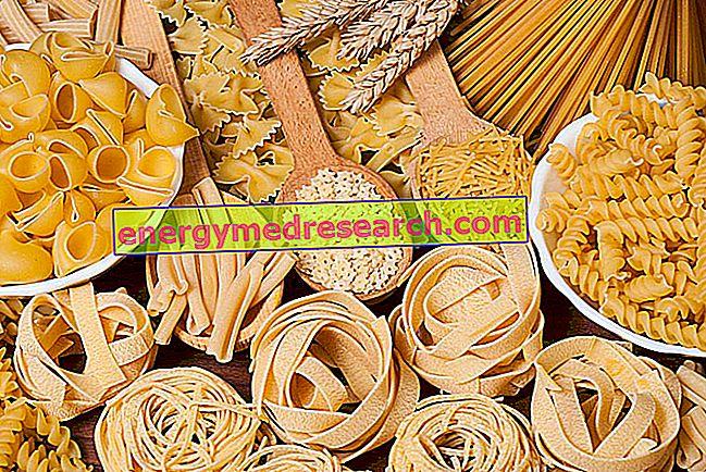 वैज्ञानिक कहते हैं: पास्ता वसा नहीं मिलता है