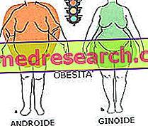 a központi elhízás lefogy