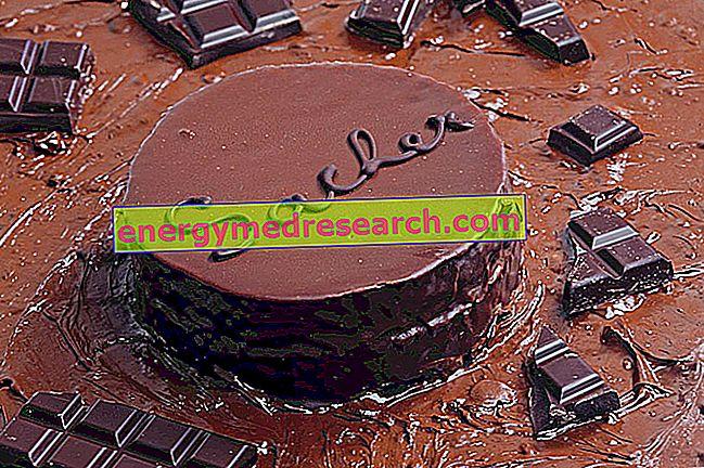 दुनिया में सबसे प्रसिद्ध चॉकलेट केक