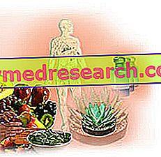 Aromatherapie: Aushärten mit ätherischen Ölen