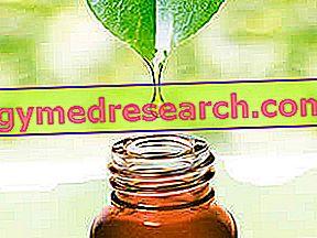 Candida-hoito yrtteillä