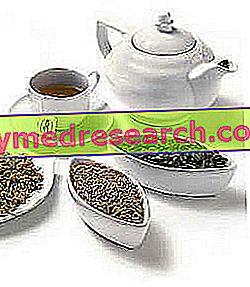 الشاي العشبية وصفات السعال العشبية