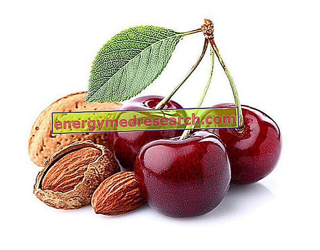 Hueso de cereza