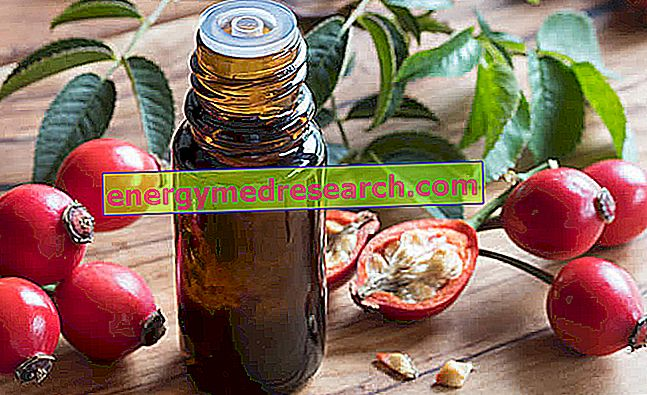 hipertenzija ir vaistai iš gudobelių