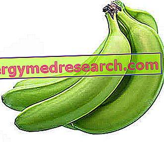 Pavyzdys Dieta nuo dizenterijos