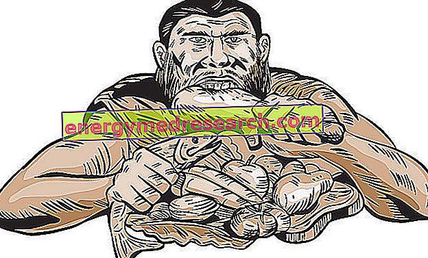 PaleoDieta pavyzdys