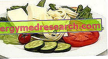 Пример исхране за остеопорозу