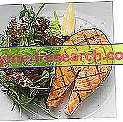 मधुमेह मेलेटस टाइप 2 के लिए उदाहरण आहार