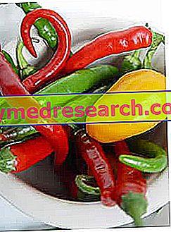 Ialal Hernia diet example