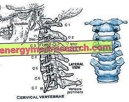Cvičenie na bolesť krčka maternice