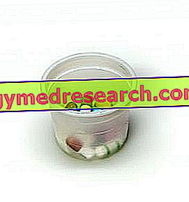Anorectics - Anorectic Drugs and Supplements