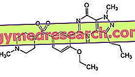 Sildenafil Viagra: mecanismo de ação
